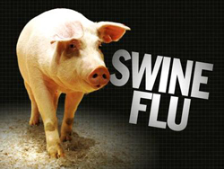 Swine Flu Pandemic Preparation Workshop